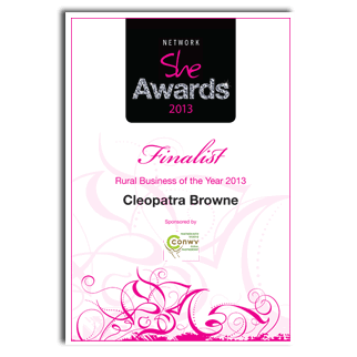 Network She International Womens Day Awards 2013 Rural Business of the Year Finalist
